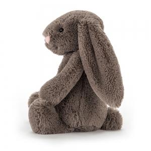 Bashful Truffle Bunny