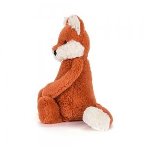 Bashful Fox Cub